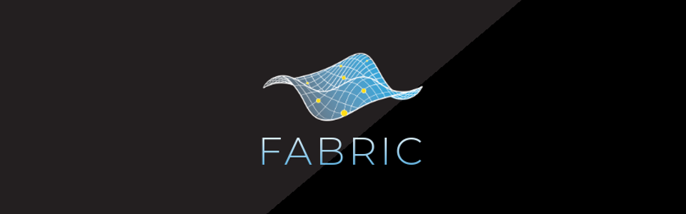 Fabric Testbed